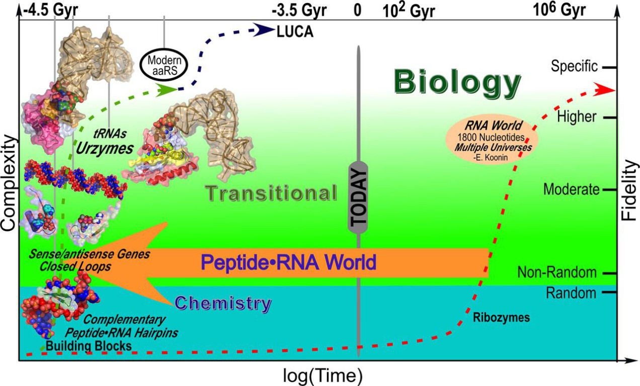 Origins of Life: Biochemical Evolution in the Primordial Soup ...